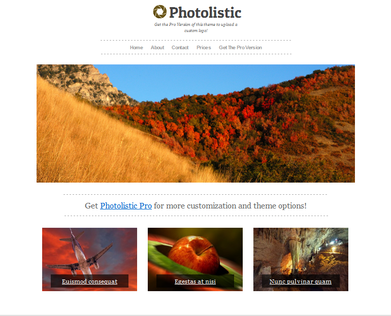 photolistic wordpress portfolio theme