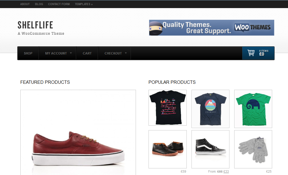 Top 10+ WordPress Themes for e-Commerce and Online Store